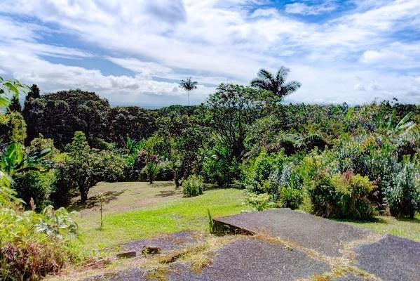 764 Kulaloa Rd, HILO, 96720 Primary Photo