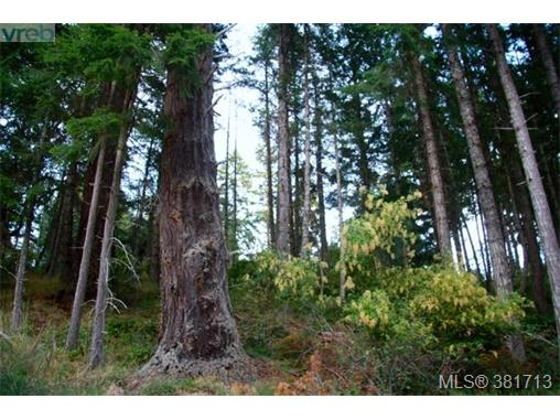 Lot 11 Cormorant Cres, Salt Spring Island, BC, V8K 1G8 Primary Photo