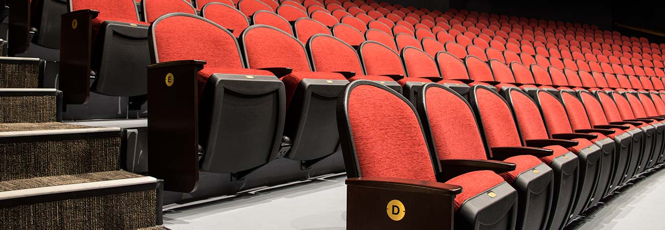 Auditorium And Theater Seating For Schools And