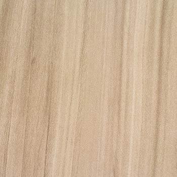 WZ6001T Dry Creek Plum Tree