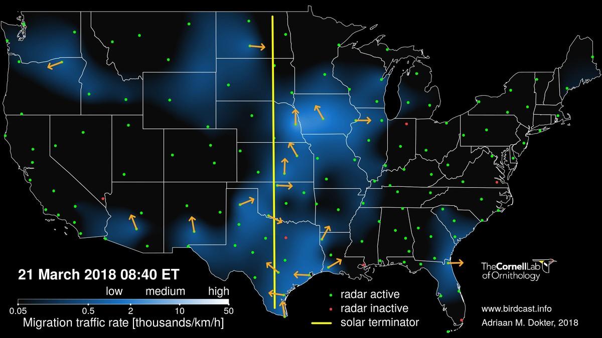Live migration map preview image