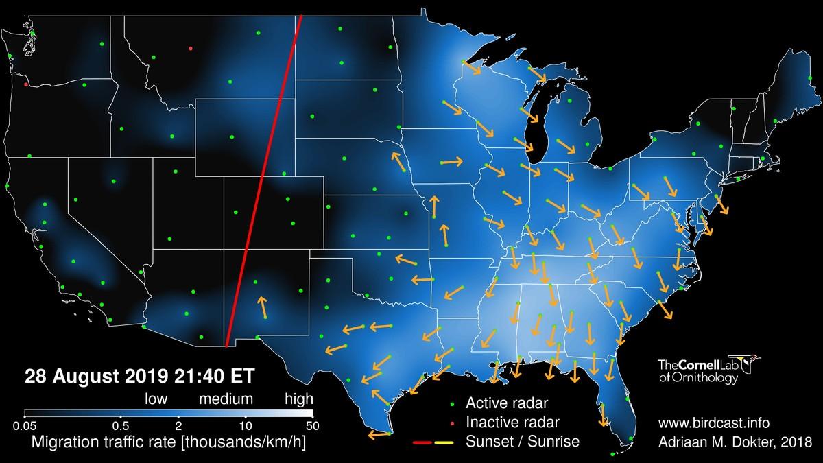 Live Migration Maps : BirdCast