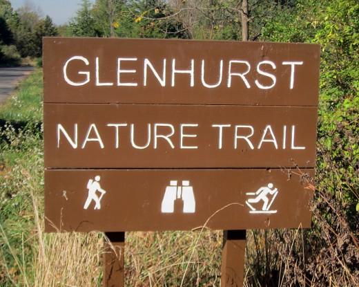 Glenhurst sign