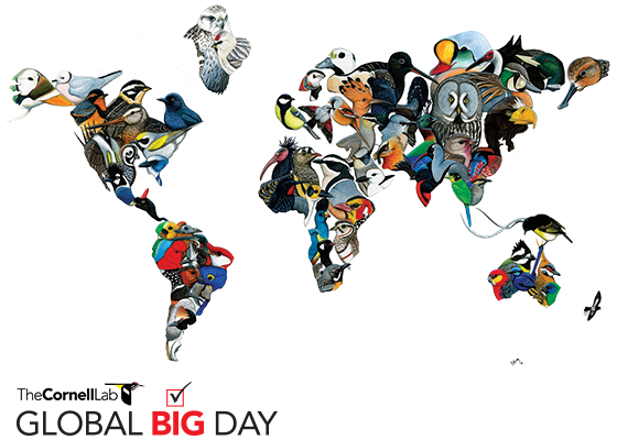 Global-Big-Day_map-560