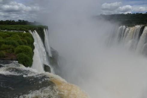 A visit to Iguazu Falls ticked Great Dusky Swifts ;) Photo by Noah Strycker