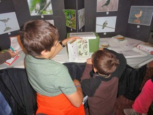 Elijah Martineau and his little brother working on the Kaufman Bird I.D. Quiz. Photo by Gerry Brevoort.
