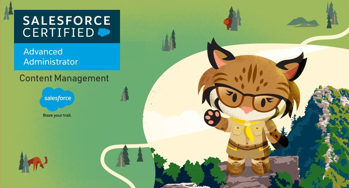 Salesforce Advanced Adminstrator Exam Preparation: Content Management
