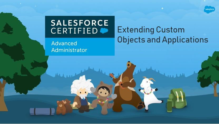 Salesforce Advanced Adminstrator Exam Preparation: Extending Custom Objects and Applications