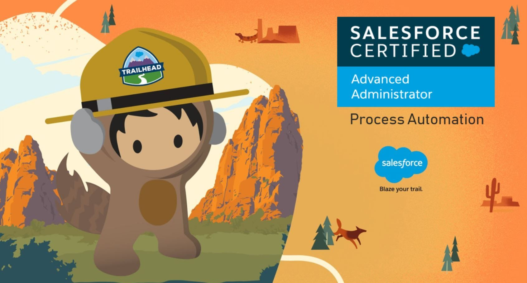 Salesforce Advanced Adminstrator Exam Preparation: Process Automation