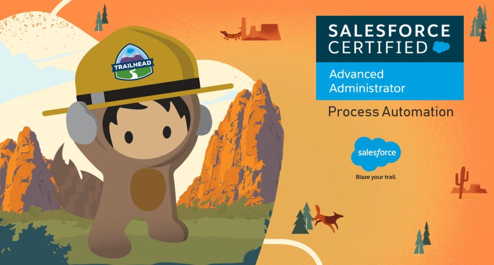 Salesforce Advanced Adminstrator Exam Preparation: Process Automation
