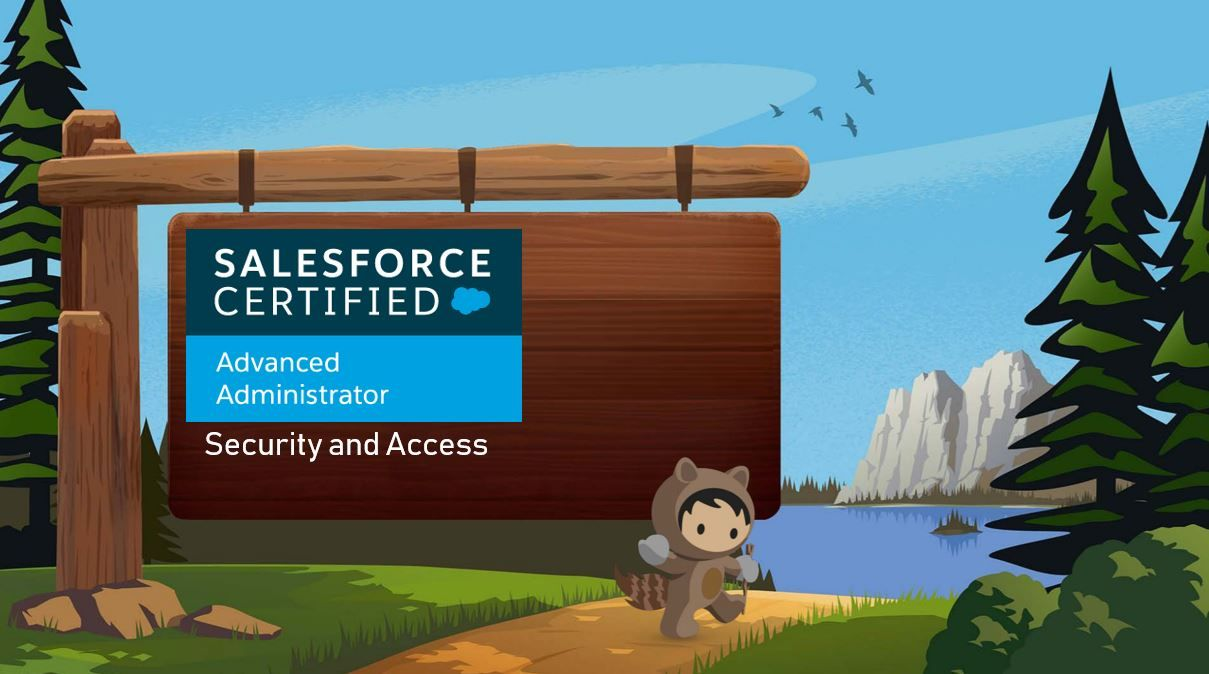 Salesforce Advanced Adminstrator Exam Preparation: Security and Access