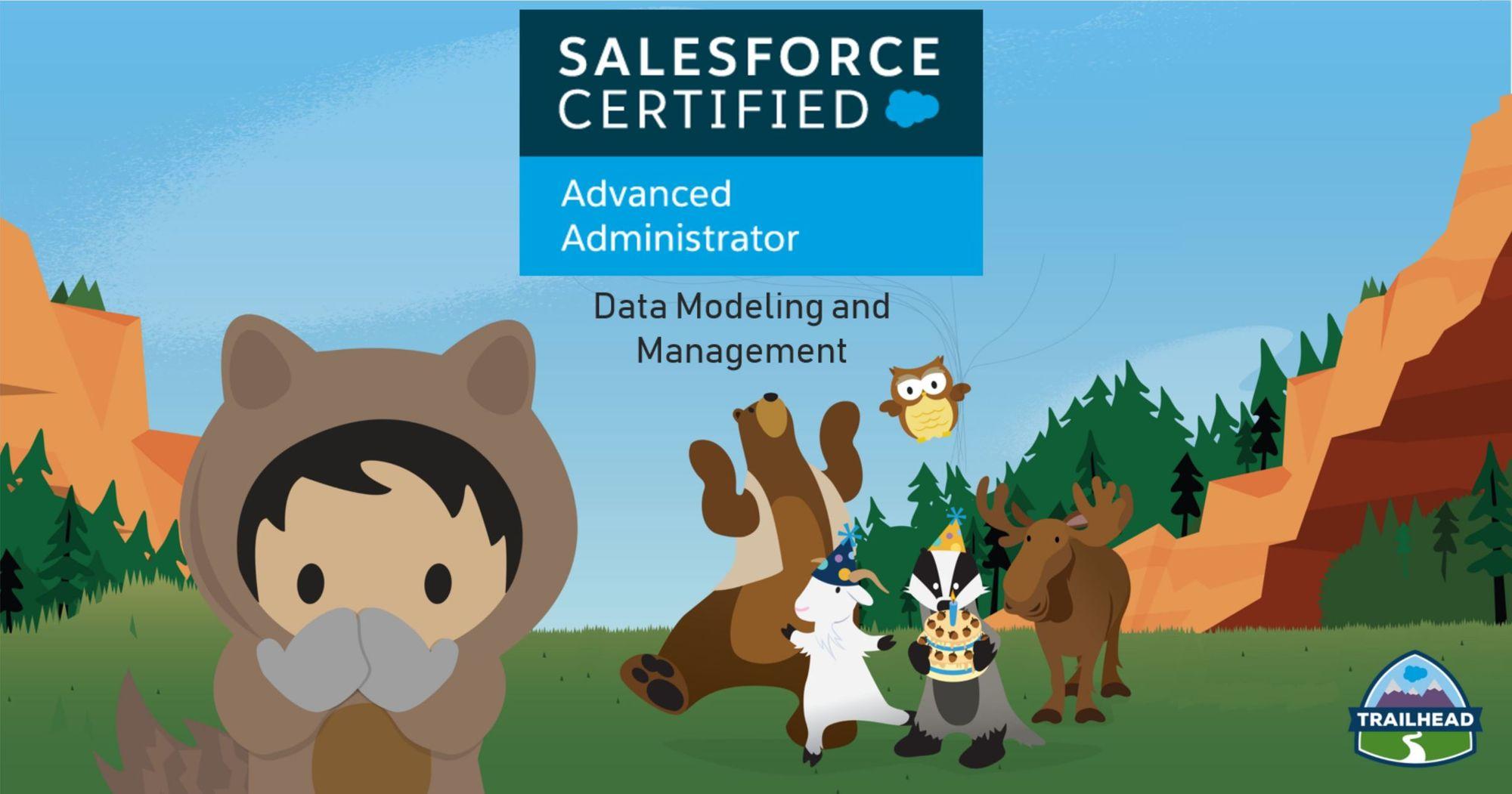 Salesforce Platform Dev II Exam Preparation: Data Modeling and Management