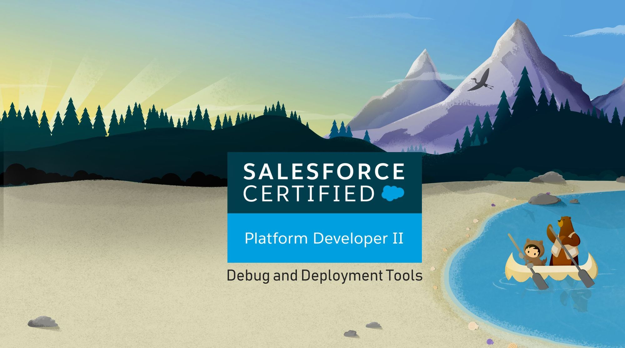 Salesforce Platform Dev II Exam Preparation: Debug and Deployment Tools