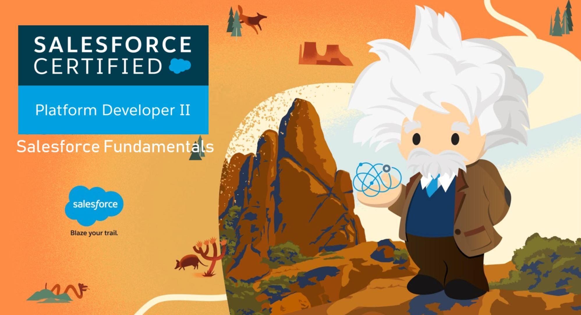 Salesforce Platform Dev II Exam Preparation: Salesforce Fundamentals