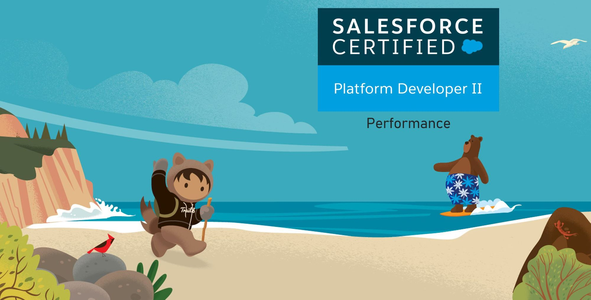 Salesforce Platform Dev II Exam Preparation: Performance