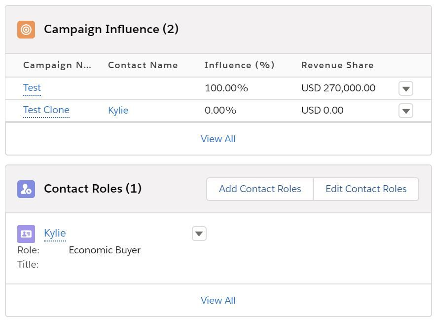 campaign-influence-contact-role