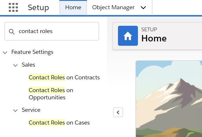 contact-roles