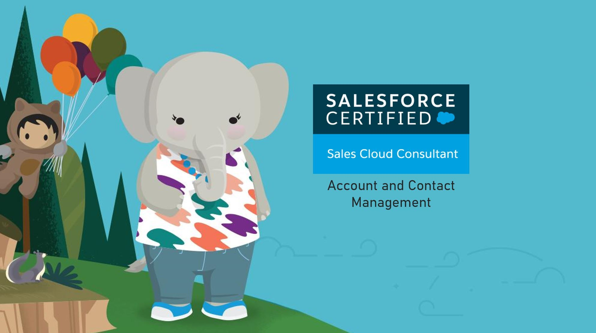 Salesforce Sales Cloud Consultant Exam Preparation: Account and Contact Management