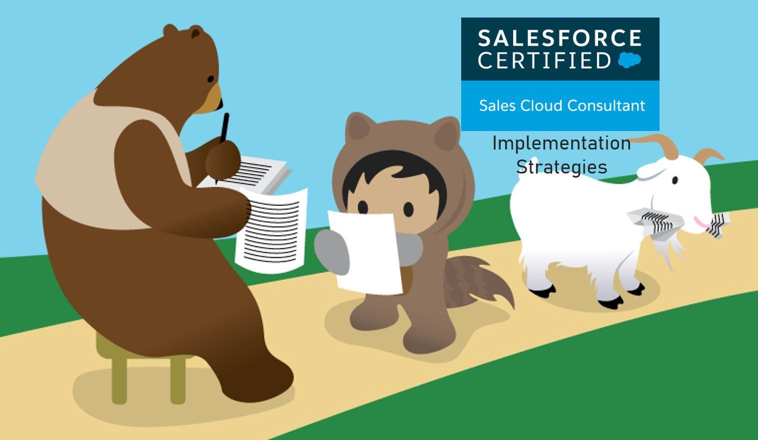 Salesforce Sales Cloud Consultant Exam Preparation: Implementation Strategies