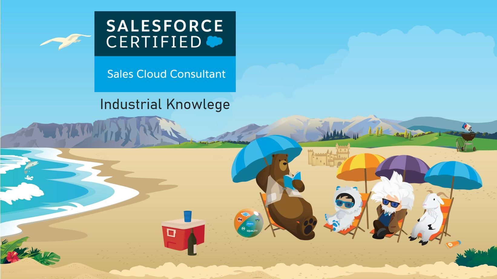 Salesforce Sales Cloud Consultant Exam Preparation: Industry Knowledge