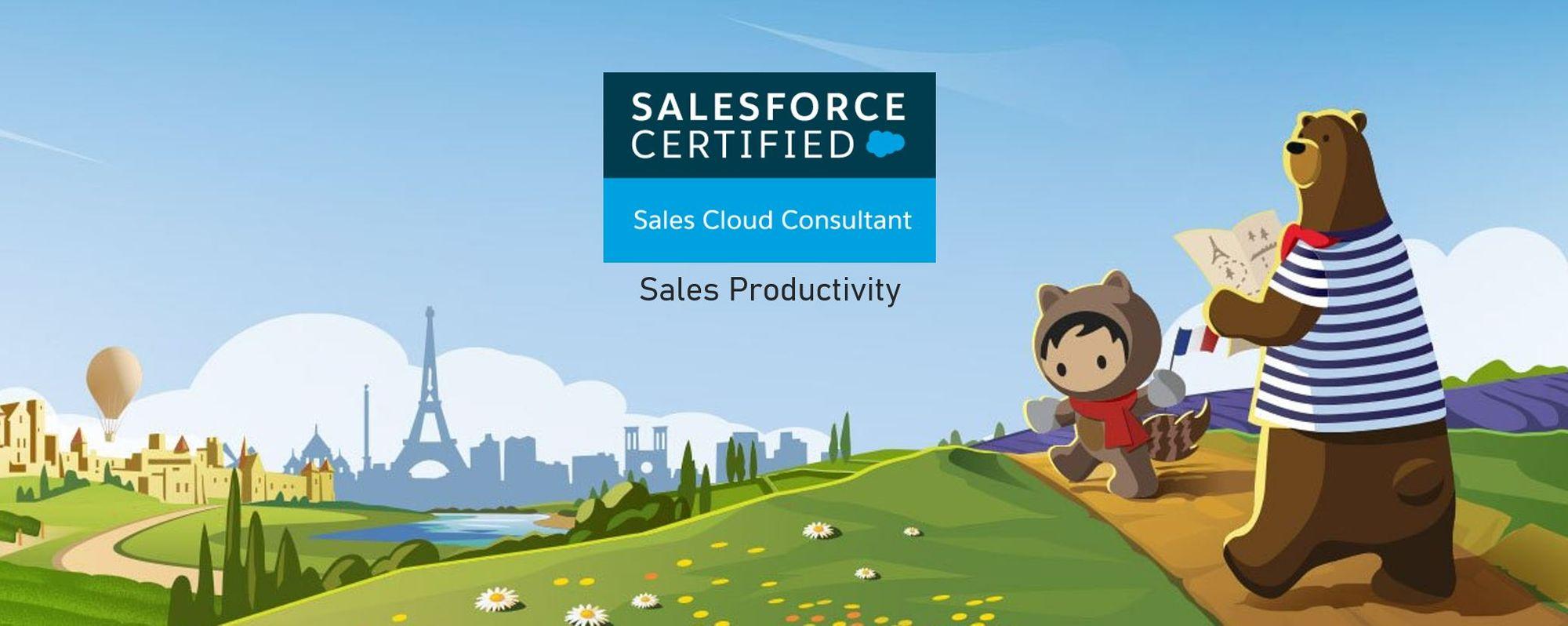Salesforce Sales Cloud Consultant Exam Preparation: Sales Productivity