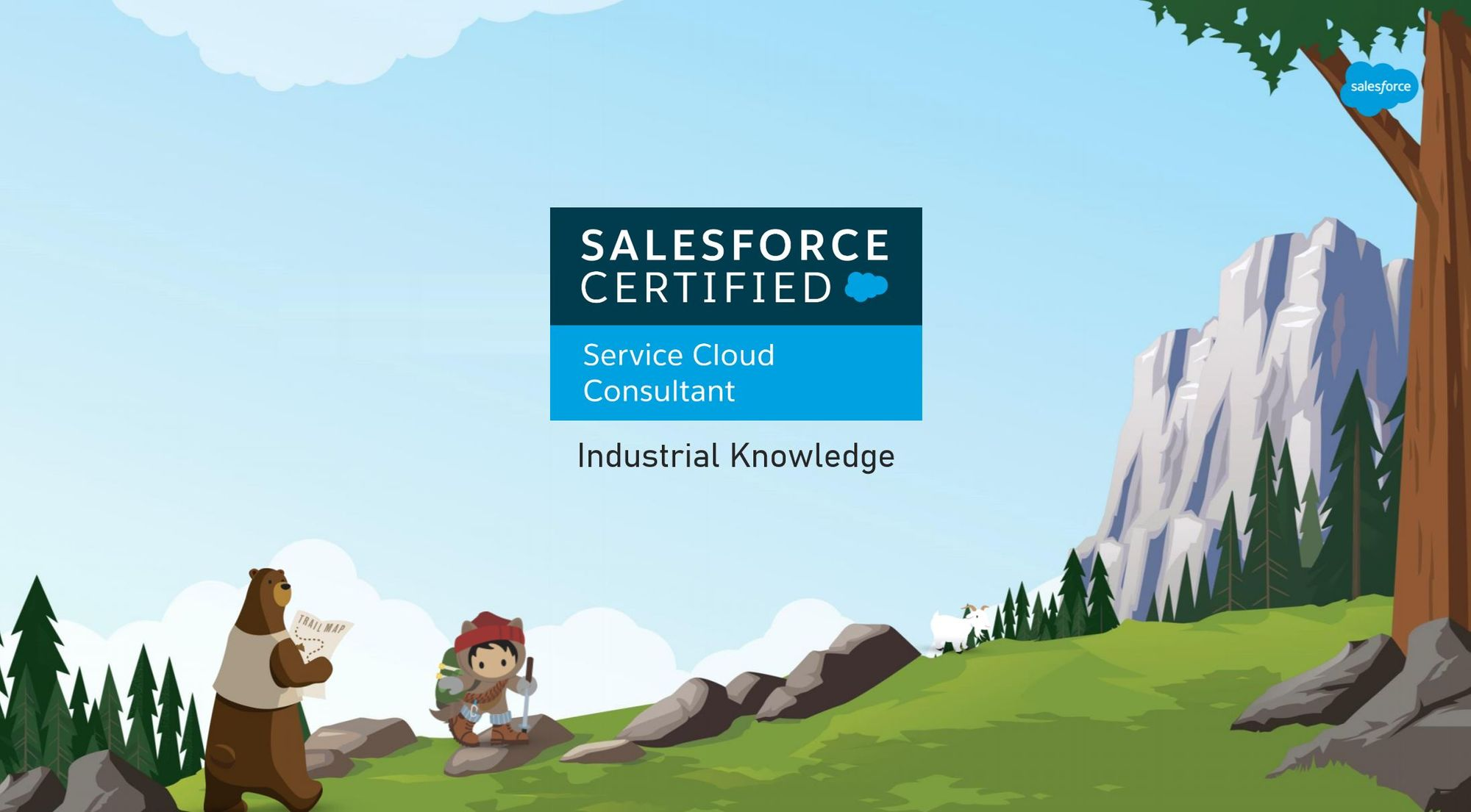 Salesforce Service Cloud Consultant Exam Preparation: Industry Knowledge