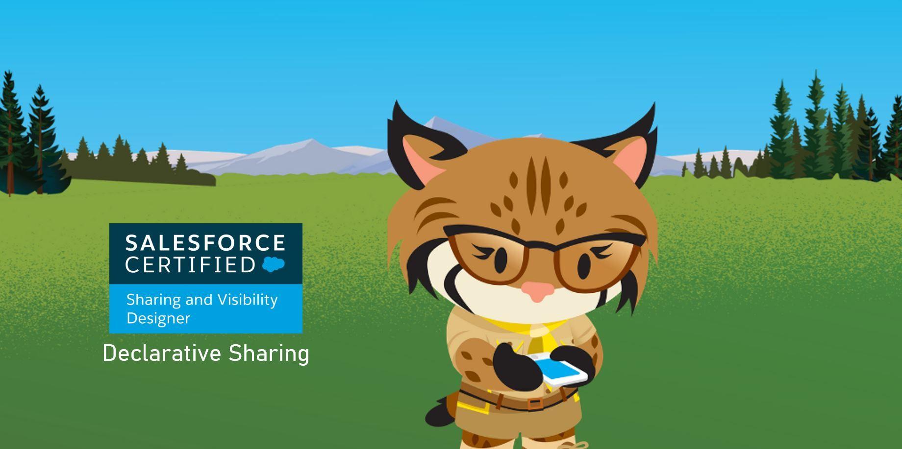Salesforce Sharing and Visibility Designer Exam Preparation: Declarative Sharing
