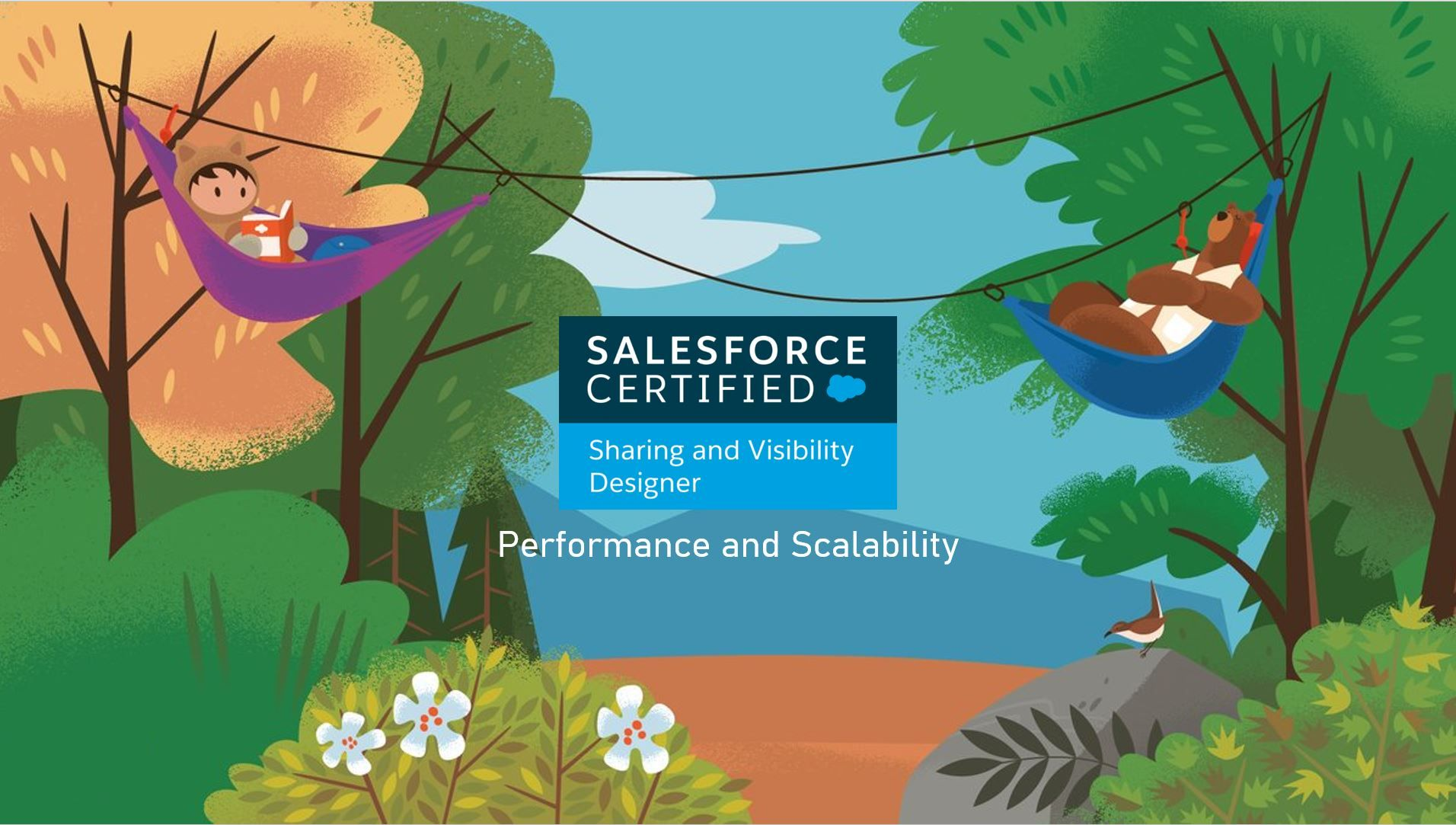 Salesforce Sharing and Visibility Designer Exam Preparation: Performance and Scalability
