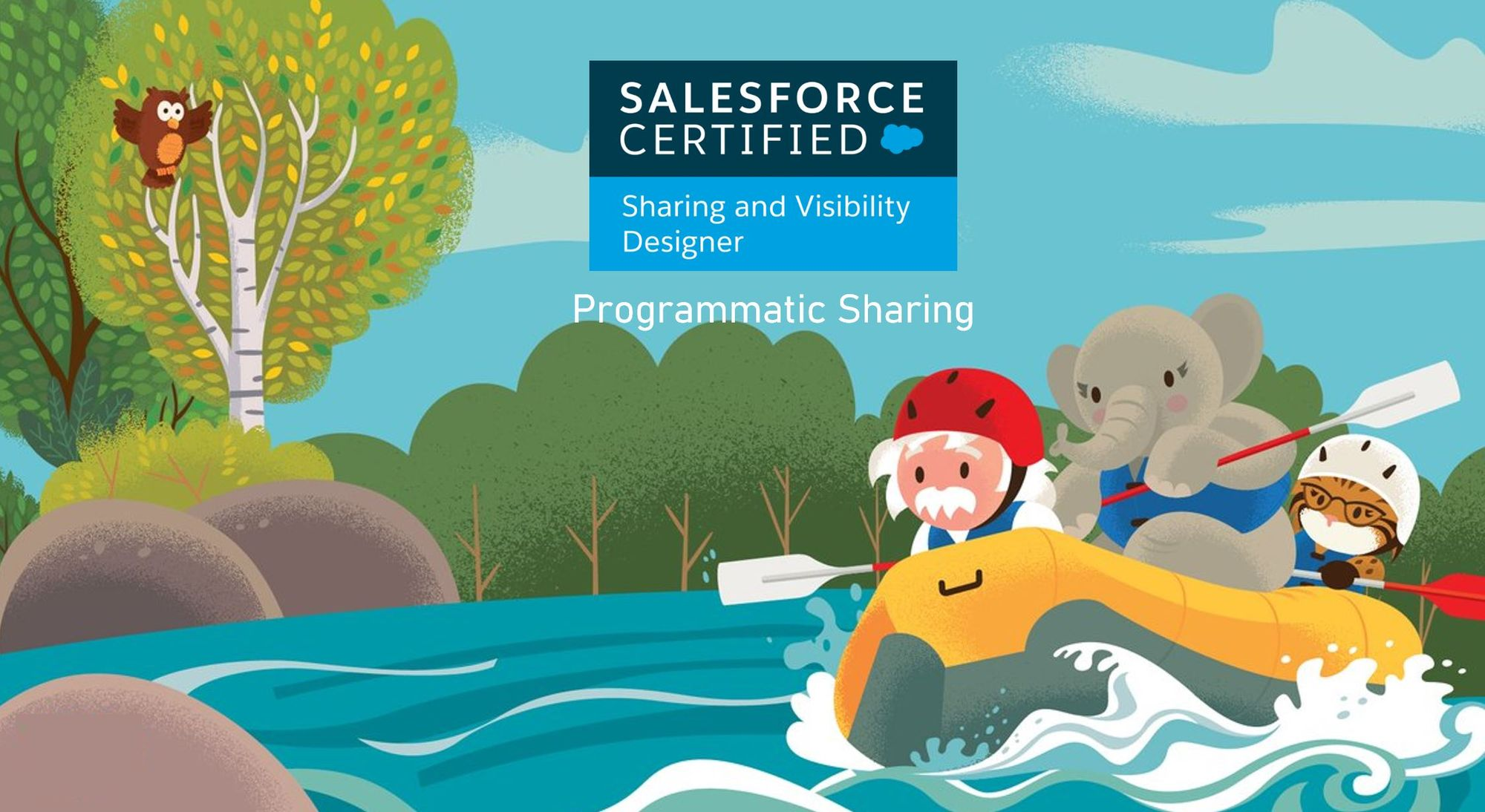Salesforce Sharing and Visibility Designer Exam Preparation: Programmatic Sharing