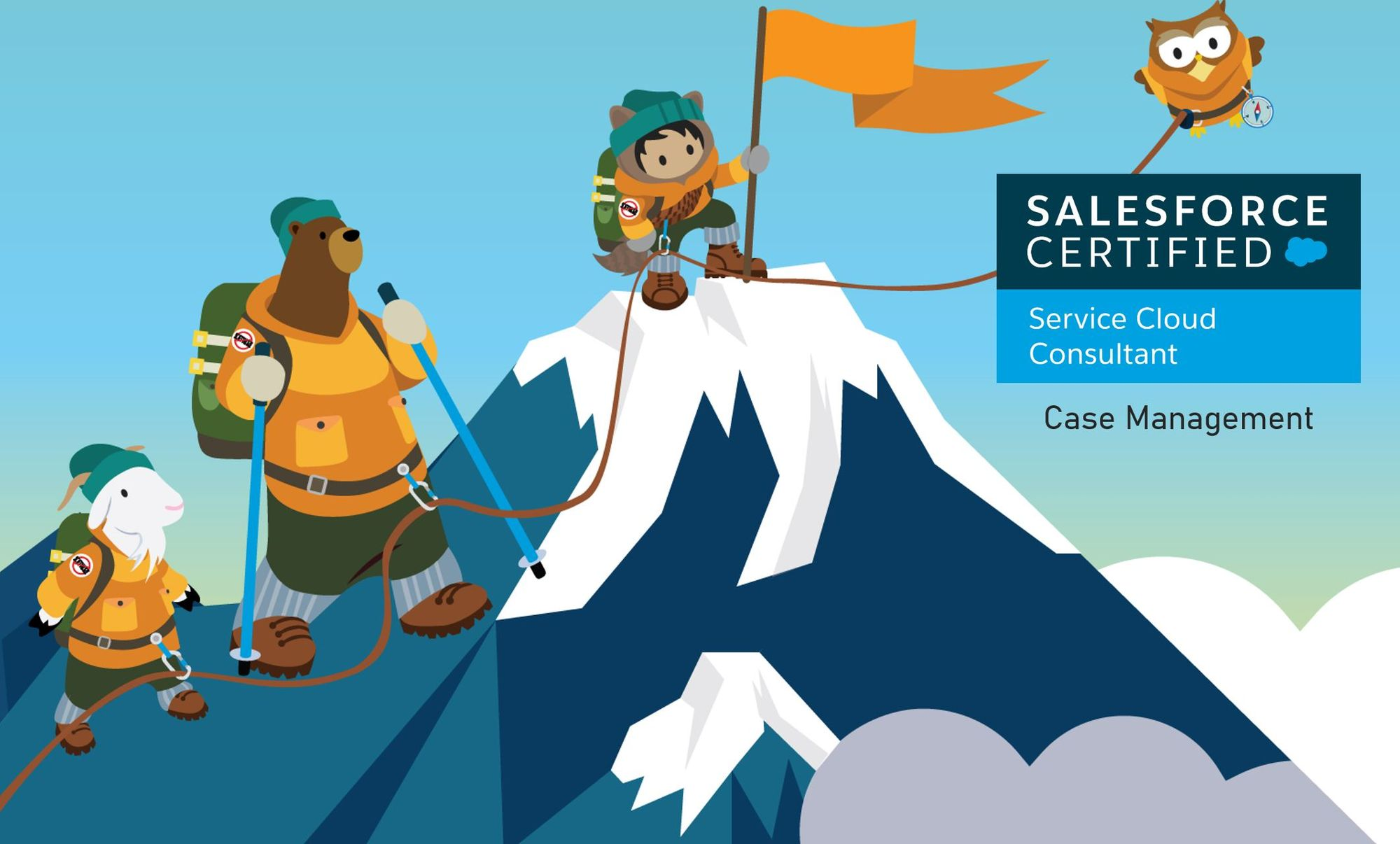 Salesforce Service Cloud Consultant Exam Preparation: Case Management