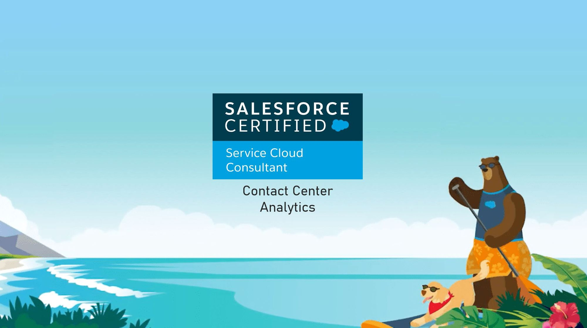 Salesforce Service Cloud Consultant Exam Preparation: Contact Center Analytics