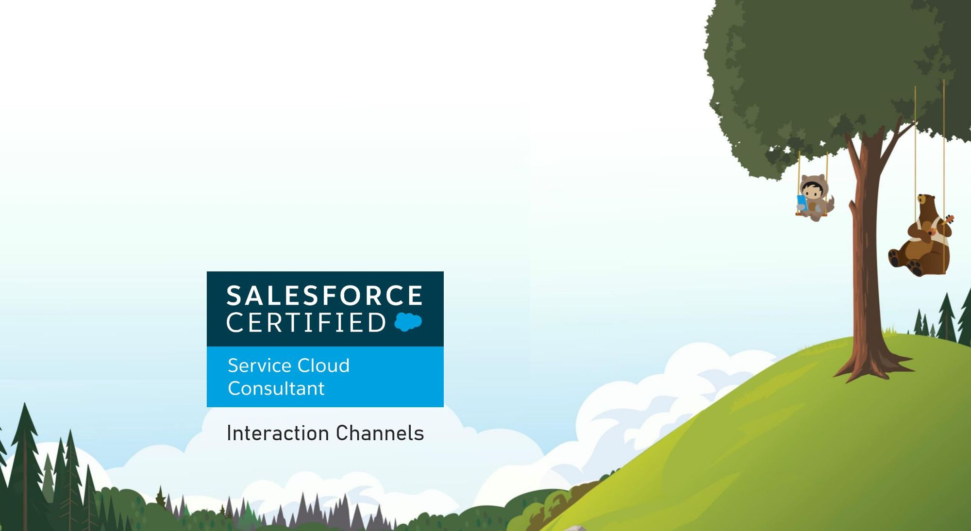 Salesforce Service Cloud Consultant Exam Preparation: Interaction Channels