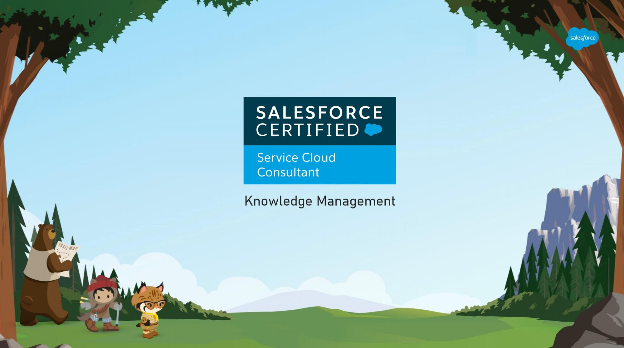 Salesforce Service Cloud Consultant Exam Preparation: Knowledge Management
