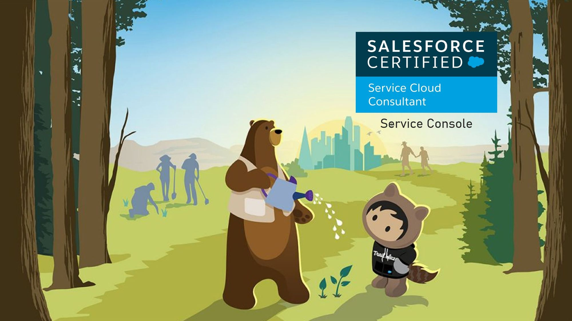 Salesforce Service Cloud Consultant Exam Preparation: Service Console