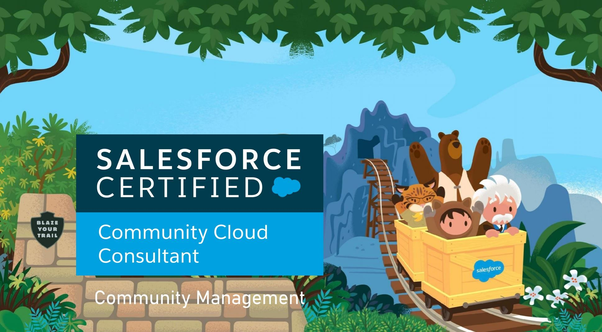Salesforce Community Cloud Consultant Exam Preparation: Community Management