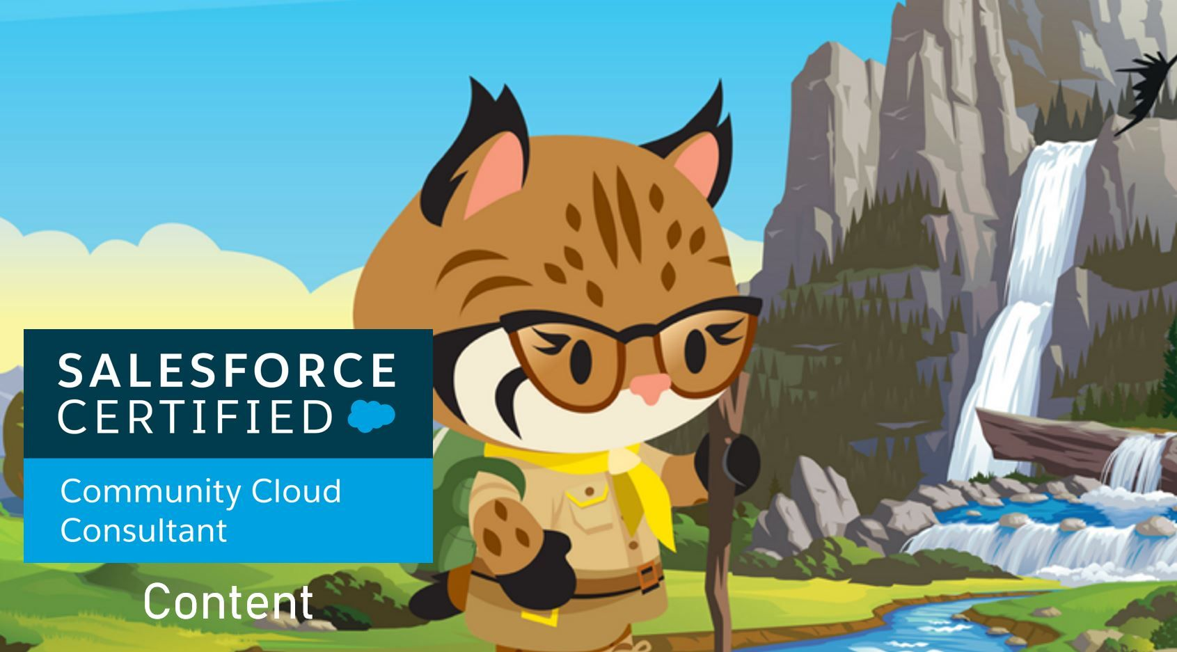 Salesforce Community Cloud Consultant Exam Preparation: Content