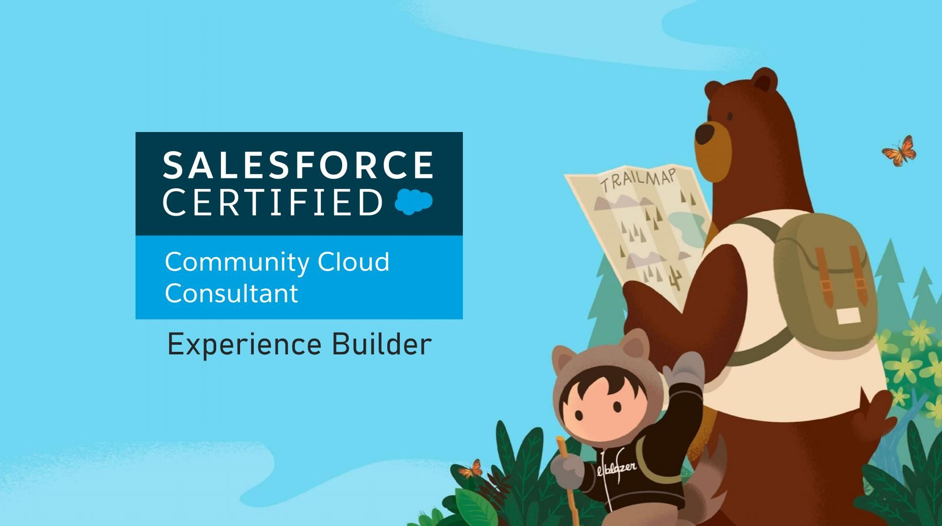 Salesforce Community Cloud Consultant Exam Preparation: Experience Builder