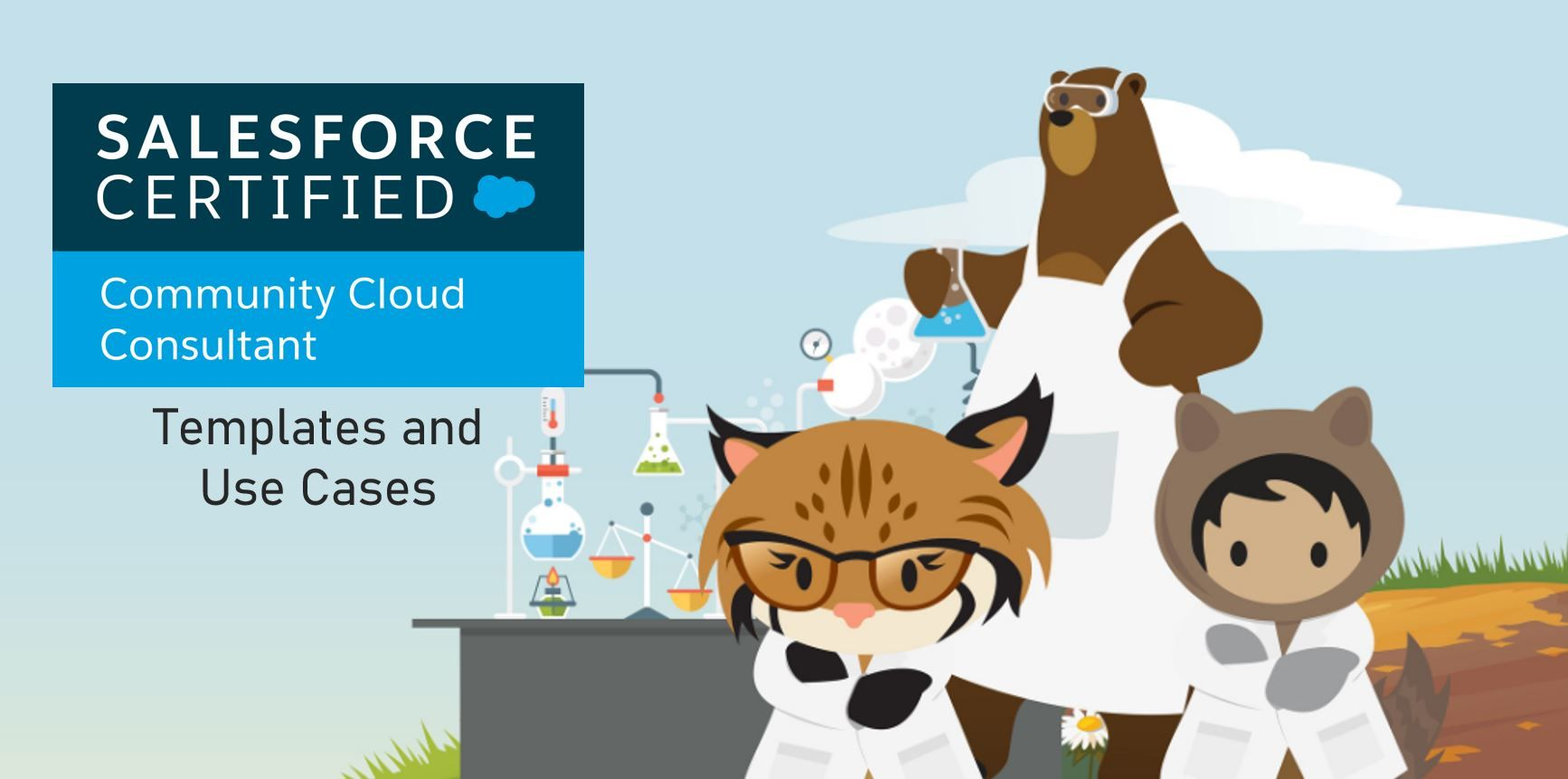 Salesforce Community Cloud Consultant Exam Preparation: Templates and Use Cases