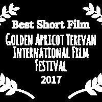 Middle best short film   golden apricot yerevan international film festival   2017