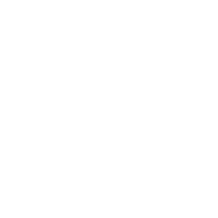 Middle gold remi winner    worldfest houston international film festival   2017