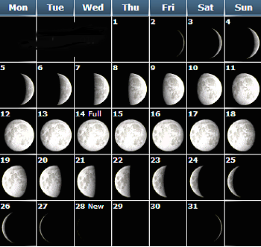 new-moon3