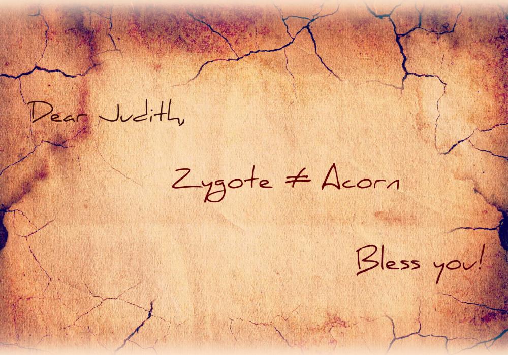 Acorn edit