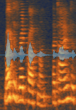 Center: Long tails processed with de-reverb