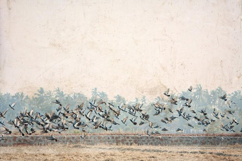 Creative-Spirit-Durban-Photographer-Jacki-Bruniquel-1
