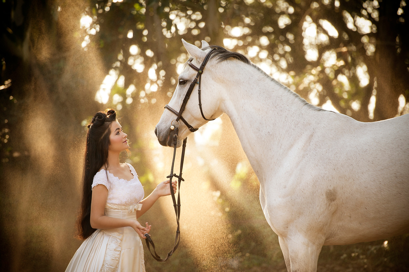 Girl with horse in amazing light
