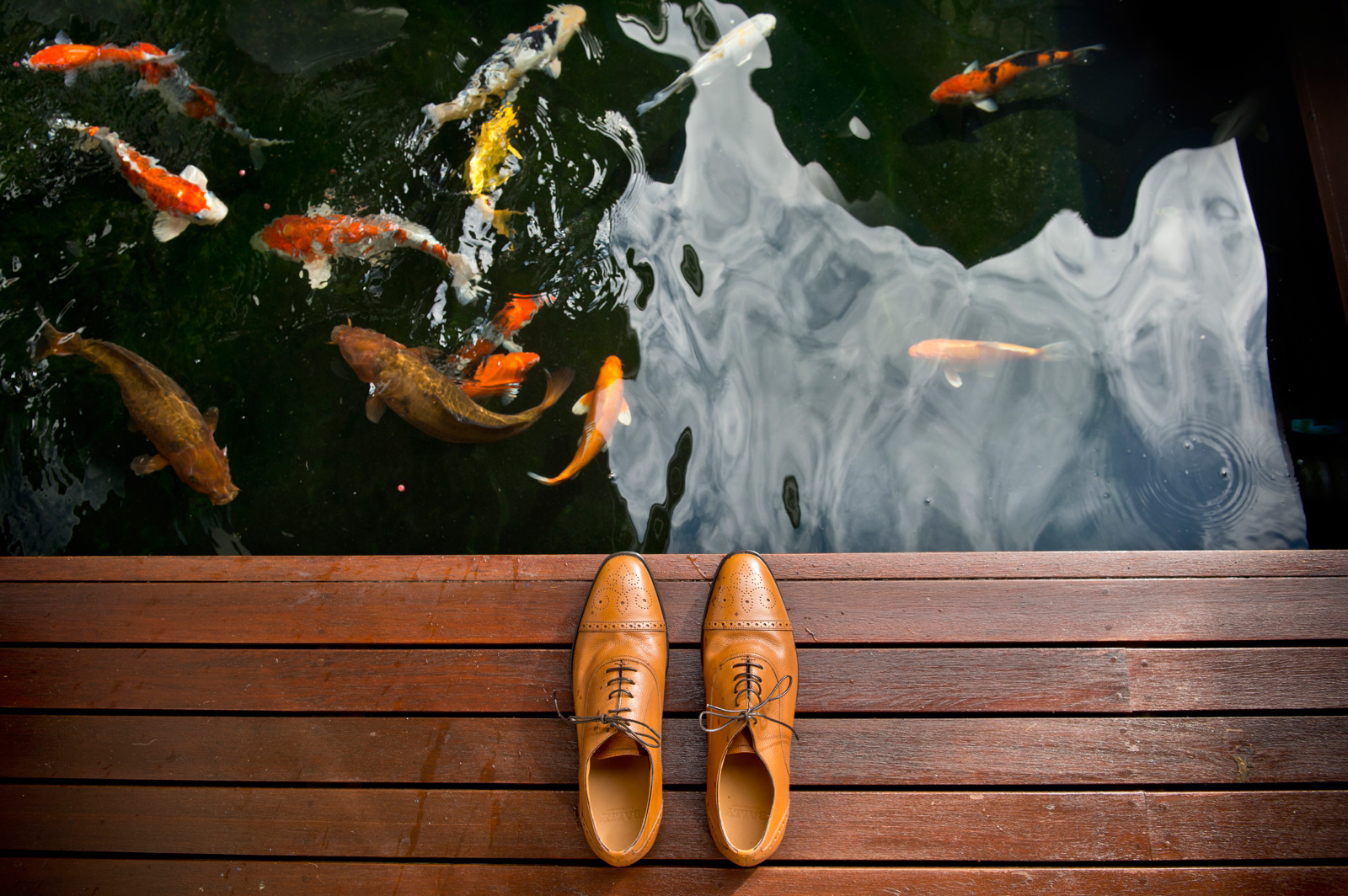 brown shoes by pond