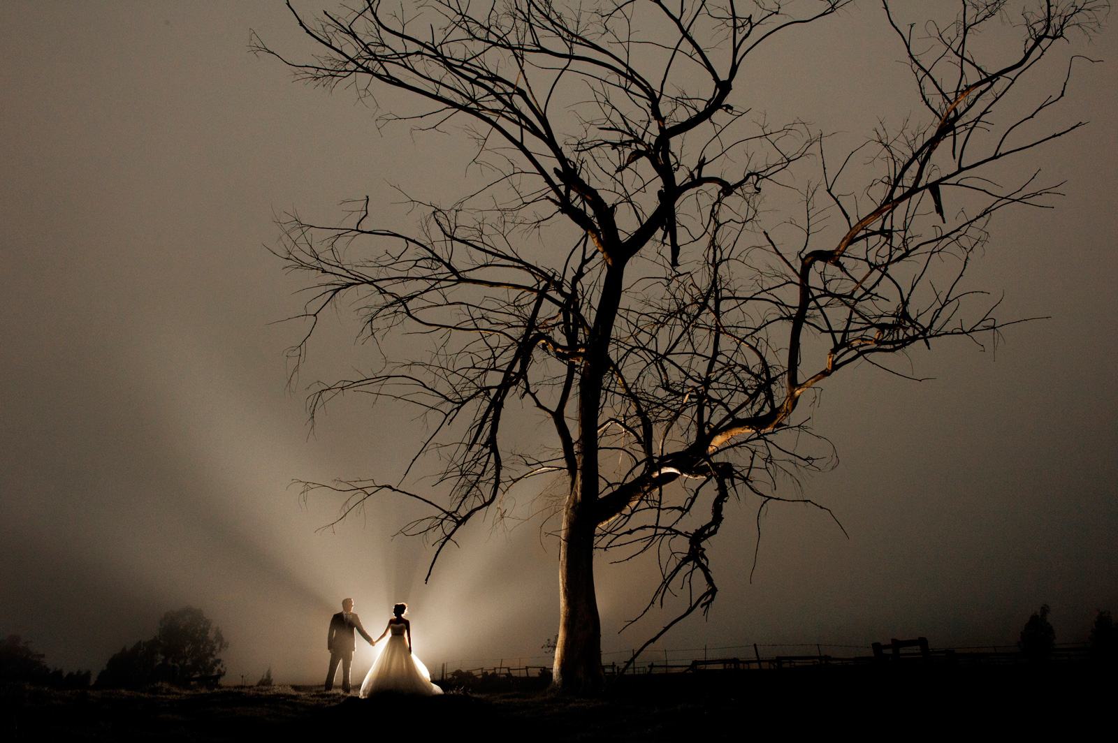 couple by tree