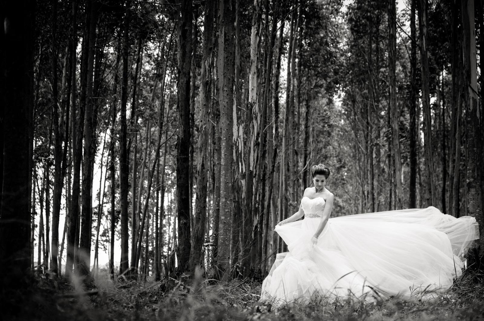 swan dress in woods