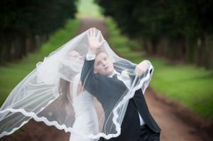 groom fighting veil