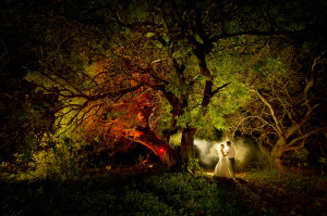 bride and groom under colourful tree
